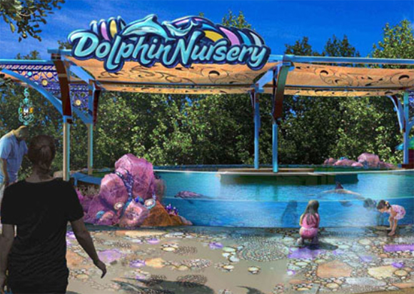But Sw Also Has Another New Element As Of This Weekend A Completely Revamped Dolphin Nursery Section Which Brings Guests Much Closer To The