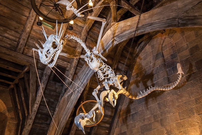 10 Magical Facts About Harry Potter And The Forbidden Journey
