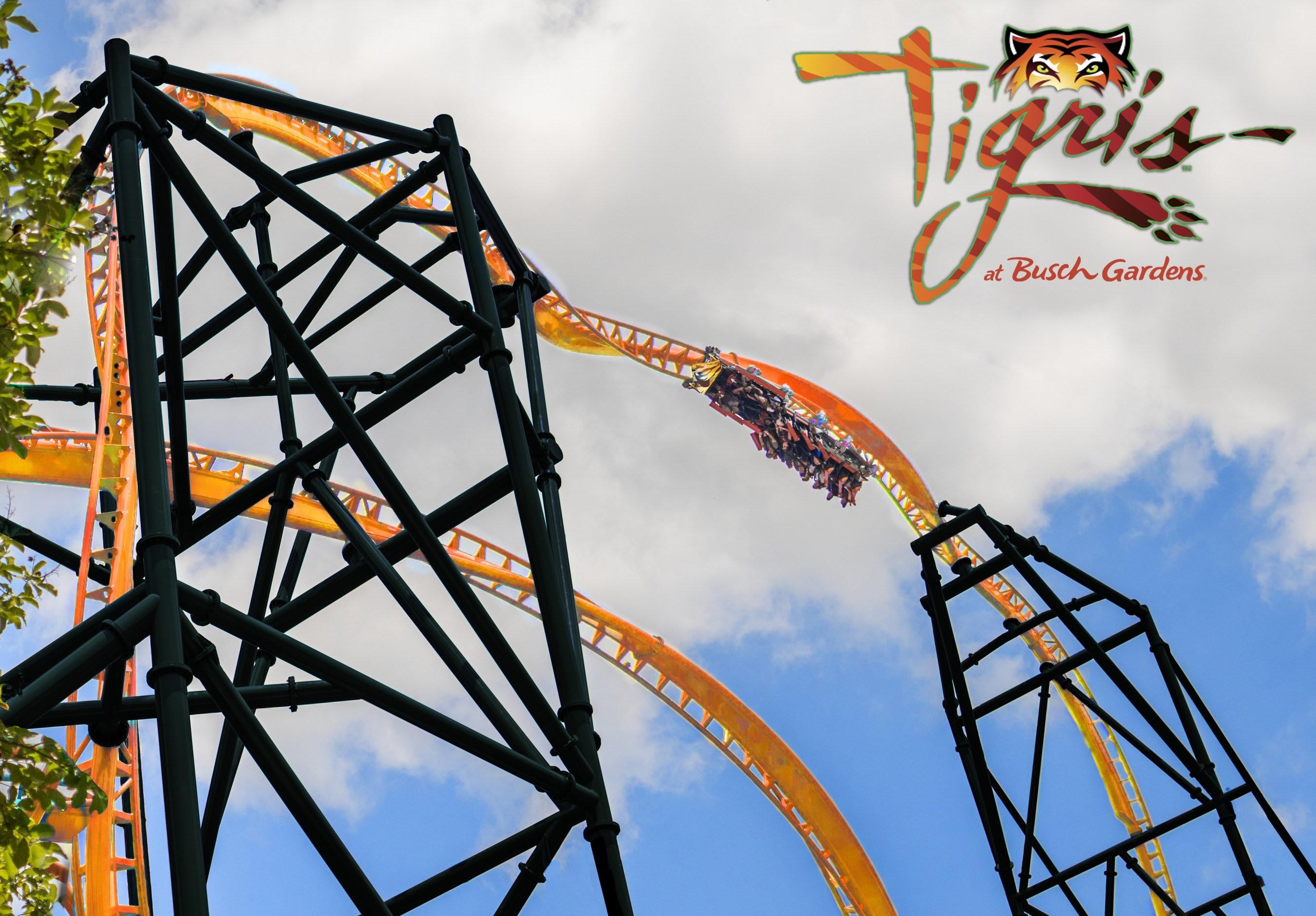 Busch Gardens Tampa To Open Tigris In 2019 Florida S Tallest Launch Coaster Orlando Parkstop