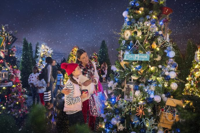 top 5 christmas events at walt disney world in 2018 - When Do Christmas Decorations Go Up At Disney World 2017
